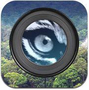 Instant Wild App