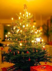 Weihnachtsbaum Christmas Radio
